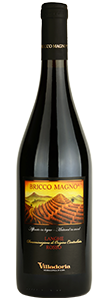villadoria-langhe-rosso-doc-bricco-magno-77x300